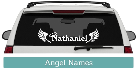 Everyone knows at least one Angel that they need to remember with a personalized memorial car window decal